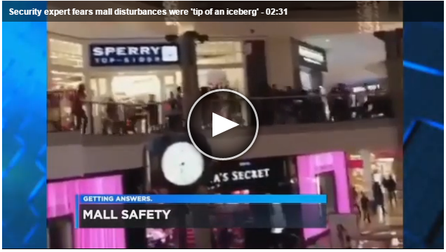 Cleveland10News: Security Expert Fears Mall Disturbances Were 'Tip of an Iceberg'