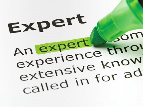 What Makes an Expert Witness Credible?