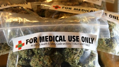 medical marijuana, SACS Consulting, drug policies in workforce